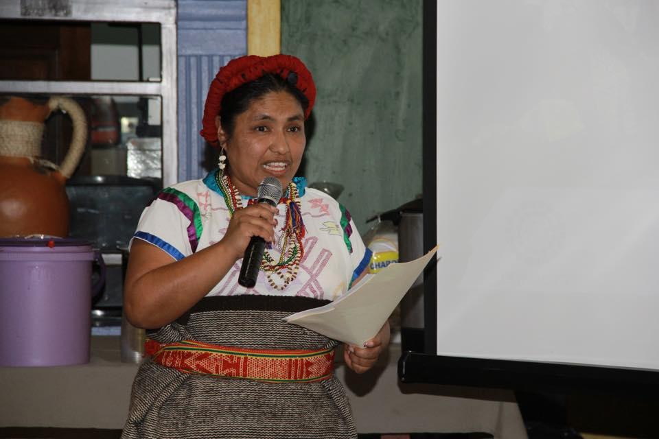 Piden apoyo económico a ocho estados para apoyar a lenguas indígenas, en riesgo de desaparición; entre ellos Oaxaca