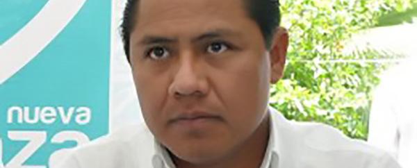 El Panal quiere 5 presidencias municipales y al menos una diputación local