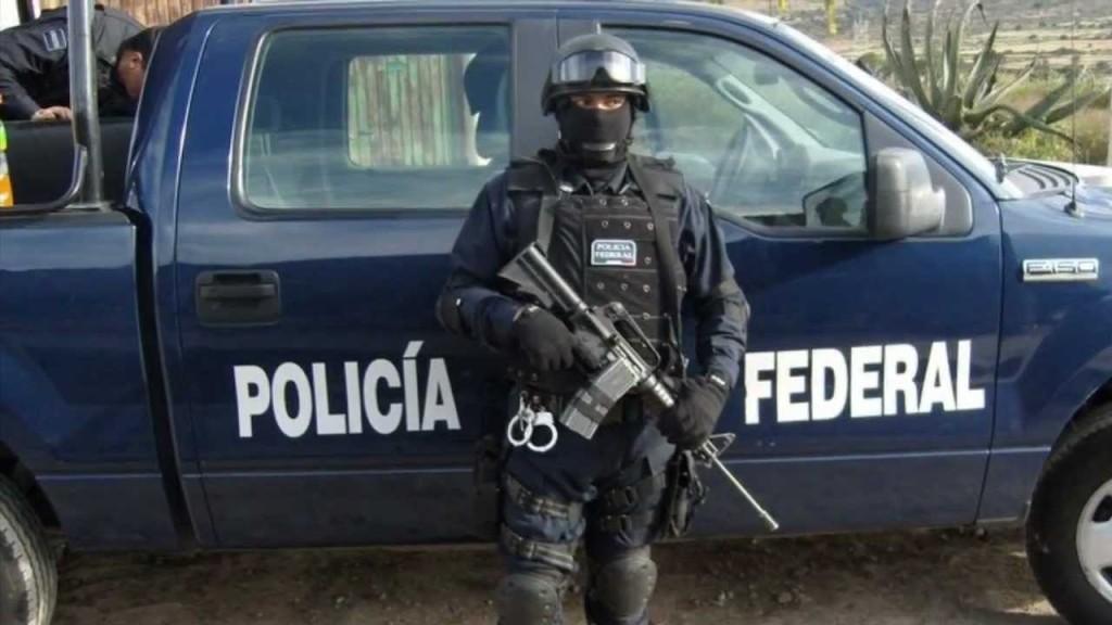Diputada del PVEM considera desafortunadas y ofensivas las descalificaciones de la Presidencia de la República contra la Policía Federal