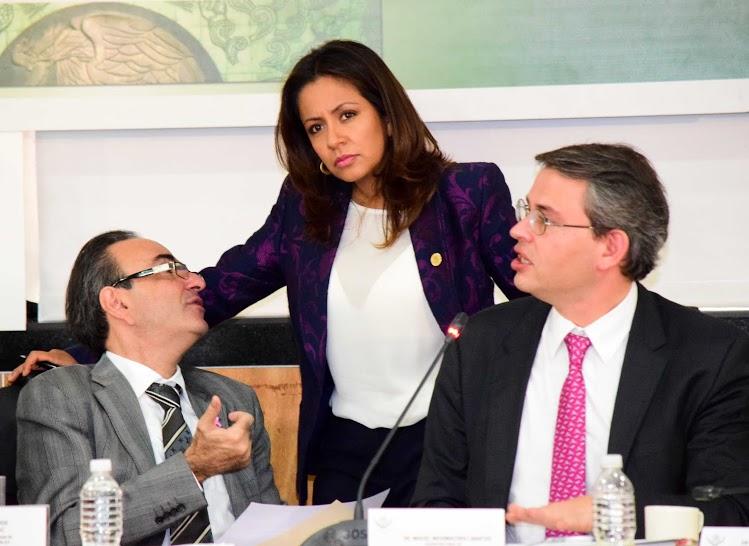 Por Reformas Estructurales México salva escenario económico adverso: Mariana Benítez