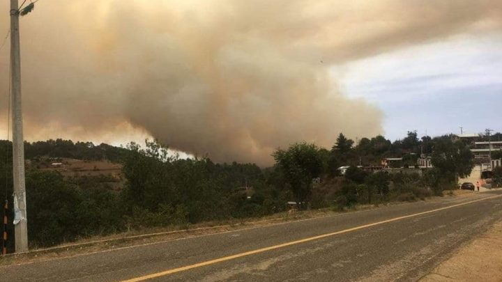 Pide Elisa Zepeda atención a incendio forestal de Santiago Tenango y Huautla de Jiménez
